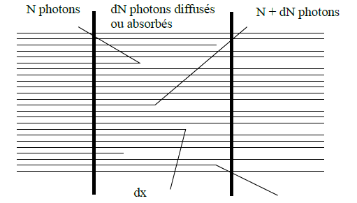 coefficient d'absorption linéique